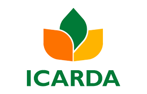 ICARDA (Egypt)